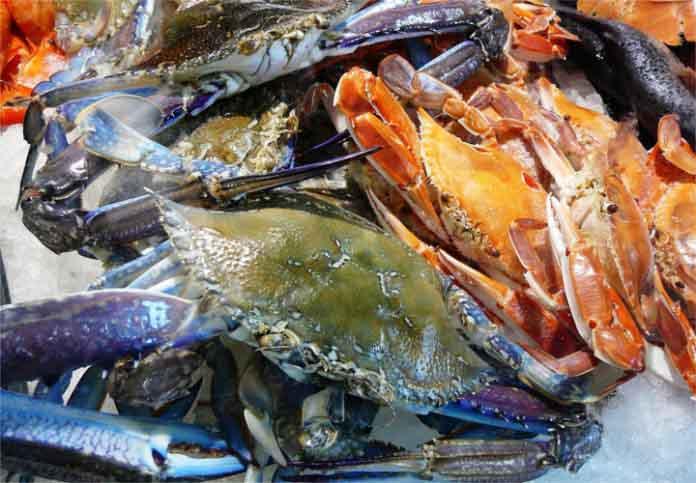comercio internacional de cangrejo