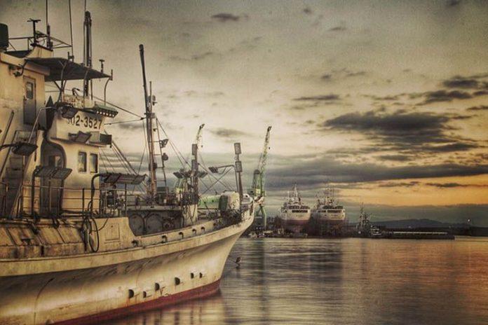 Pesca excesiva en Japón puede arruinar la reputación del país asiático