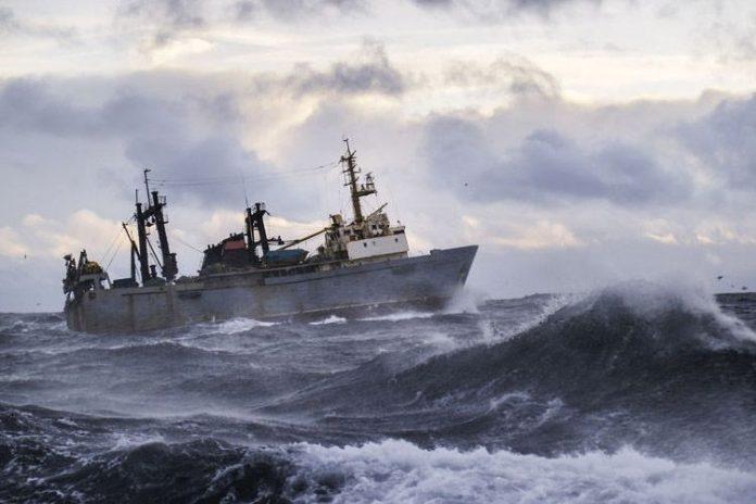 El Niño y sus efectos positivos para la anchoveta en Perú