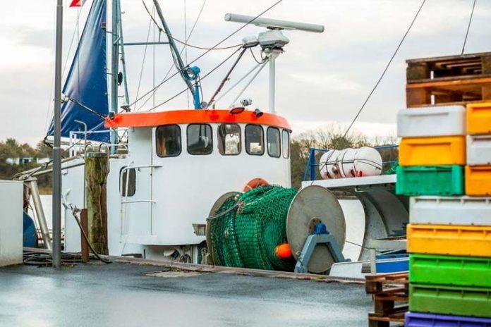 La tecnología en la pesca y su rentabilidad en la industria pesquera