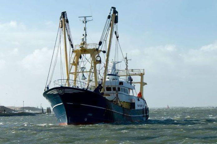 Tecnología para la gestión de la industria pesquera