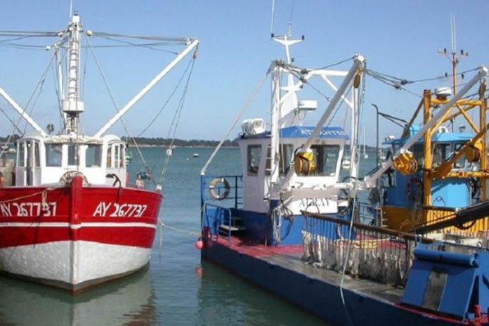 Comunicación entre buques permite una pesca más segura
