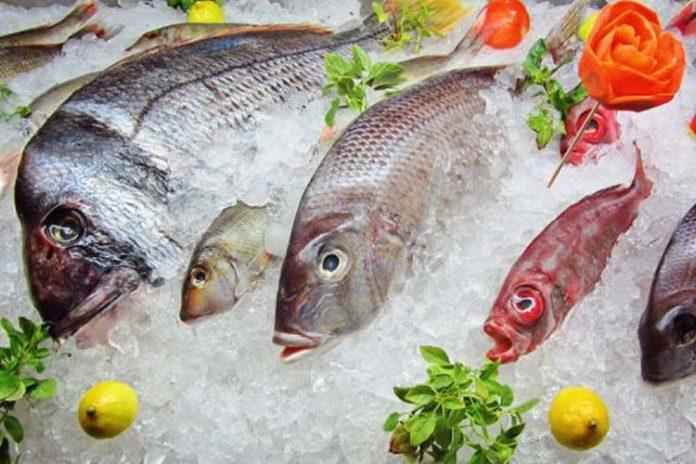 El valor agregado en la industria pesquera