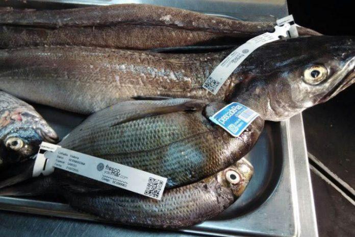 Falta de control de etiquetas en los productos pesqueros