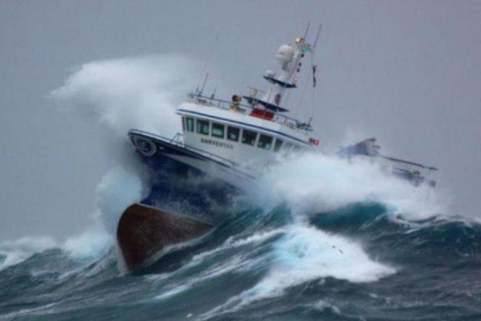 Huracanes dejan grandes pérdidas en las pesquerías