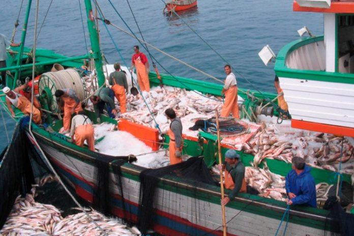 Bienestar mental de los pescadores de flotas industriales