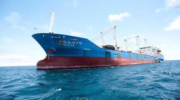 Industria pesquera China y sus complejidades